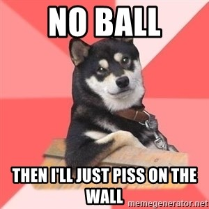 Cool Dog - No ball then i'll just piss on the wall