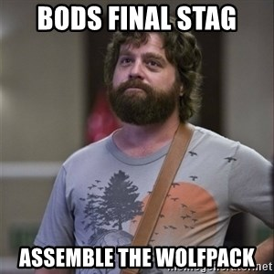 Alan Hangover - BODS FINAL STAG Assemble the wolfpack