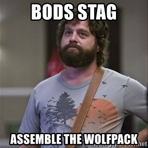 Alan Hangover - BODS STAG Assemble the wolfpack