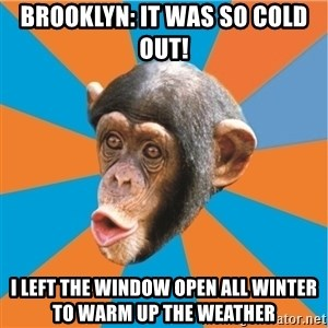 Stupid Monkey - BROOKLYN: IT WAS SO COLD OUT! I LEFT THE WINDOW OPEN ALL WINTER TO WARM UP THE WEATHER