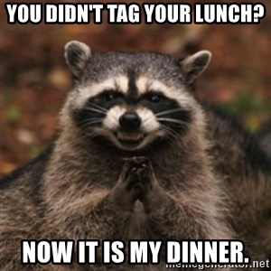 evil raccoon - You didn't tag your lunch? Now it is my dinner.