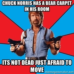 Chuck Norris  - Chuck Norris has a bear carpet in his room its not dead just afraid to move
