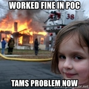 Disaster Girl - Worked fine in PoC TAMs problem now