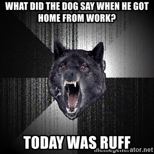 Insanity Wolf - What did the dog say when he got home from work? Today was RUFF
