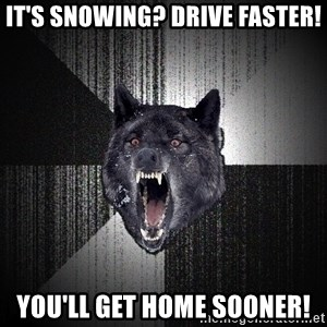 Insanity Wolf - it's snowing? drive faster! you'll get home sooner!