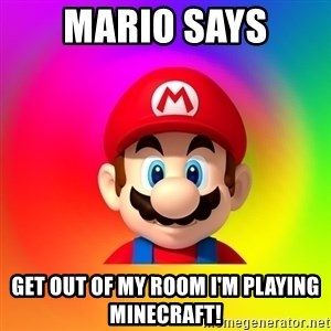 Mario Says - Mario says Get out of my room I'm playing minecraft!