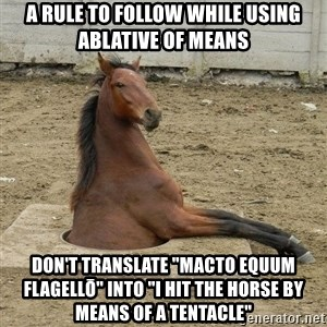 """Hole Horse - A rule to follow while using ablative of means Don't translate """"macto equum flagellō"""" into """"I hit the horse by means of a tentacle"""""""