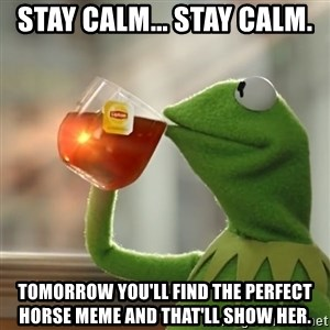 Kermit The Frog Drinking Tea - Stay calm... stay calm. Tomorrow you'll find the perfect horse meme and that'll show her.