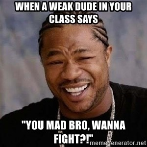 "Yo Dawg - When a weak dude in your class says ""You mad bro, Wanna fight?!"""