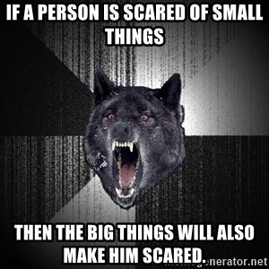 Insanity Wolf - If a person is scared of small things Then the big things will also make him scared.