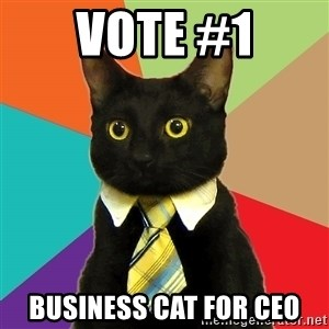 Business Cat - Vote #1 Business Cat for CEO