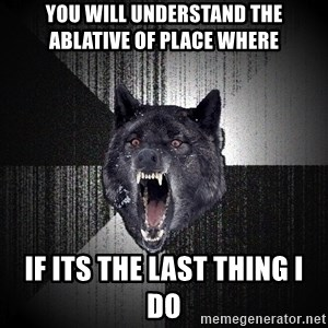 Insanity Wolf - YOU WILL UNDERSTAND THE ABLATIVE OF PLACE WHERE IF ITS THE LAST THING I DO