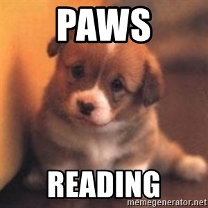 cute puppy - paws reading