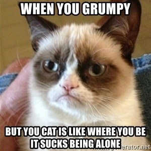 Grumpy Cat  - when you grumpy but you cat is like where you be it sucks being alone