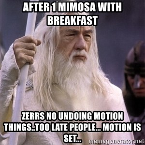 White Gandalf - After 1 mimosa with breakfast  Zerrs no undoing motion things..too late people... motion is set...