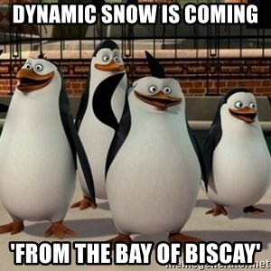 Madagascar Penguin - Dynamic snow is coming  'From the Bay of Biscay'