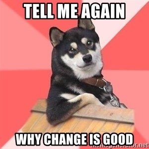 Cool Dog - tell me again why change is good