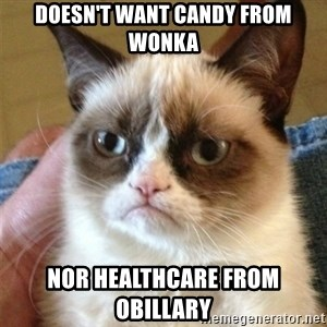Grumpy Cat  - DOESN'T WANT CANDY FROM WONKA NOR HEALTHCARE FROM OBILLARY