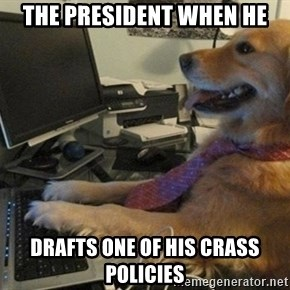 I have no idea what I'm doing - Dog with Tie - The President when he drafts one of his crass policies