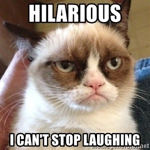 Grumpy Cat 2 - Hilarious  I can't stop laughing