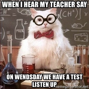 Chemistry Cat - When I Hear My Teacher say on wendsday we have a test listen up