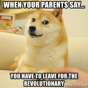 so doge - When your parents say... you have to leave for the revolutionary