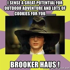 Harry Potter Sorting Hat - I sense a great potential for outdoor adventure and lots of cookies for you............ Brooker Haus !