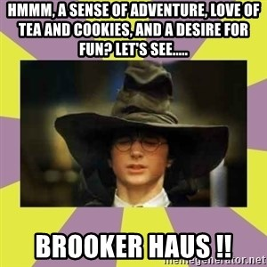 Harry Potter Sorting Hat - hmmm, a sense of adventure, love of tea and cookies, and a desire for fun? Let's see..... Brooker Haus !!