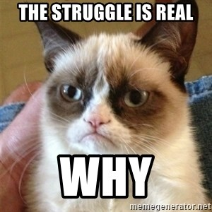 Grumpy Cat  - the struggle is REAL why