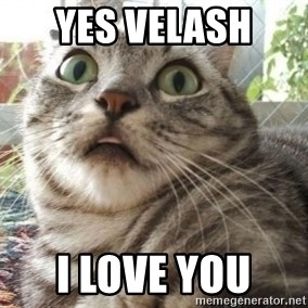 scared cat - Yes Velash  I love you