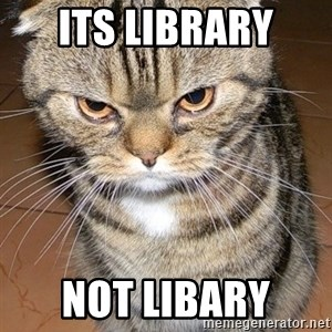 angry cat 2 - Its Library  Not Libary