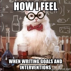 Chemistry Cat - how i feel when writing goals and interventions