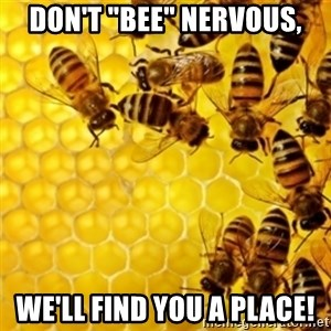 "Honeybees - Don't ""bee"" nervous, We'll find you a place!"