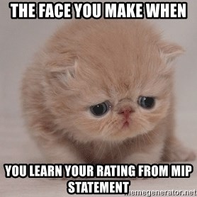 Super Sad Cat - The face you make when you learn your rating from MIP Statement