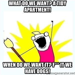 All the things - What do we want? A tidy apartment! When do we want it? F*** it we have dogs!