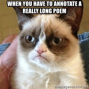 Grumpy Cat  - when you have to annotate a really long poem