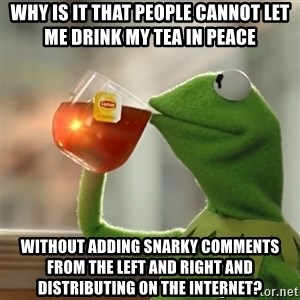Kermit The Frog Drinking Tea - Why is it that people cannot let me drink my tea in peace Without adding snarky comments from the left and right and distributing on the Internet?