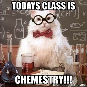 Chemistry Cat - todays class is CHEMESTRY!!!