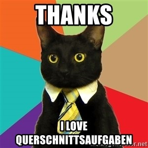 Business Cat - thanks i love querschnittsaufgaben