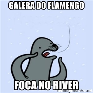 gay seal - Galera do FLAMENGO  FOCA no River