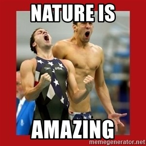 Ecstatic Michael Phelps - Nature is amazing