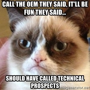Angry Cat Meme - Call the OEM they said, It'll be fun they said... Should have called Technical Prospects