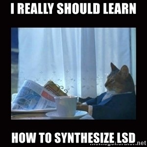 i should buy a boat cat - I really should learn How to synthesize lsd