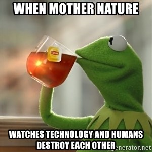 Kermit The Frog Drinking Tea - When mother nature  watches technology and humans destroy each other