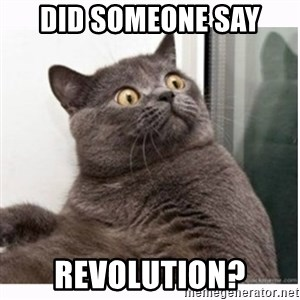 Conspiracy cat - Did Someone Say Revolution?