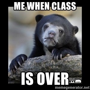 sad bear - Me when class is over