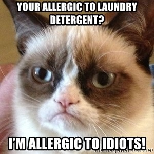 Angry Cat Meme - Your allergic to laundry detergent? I'm allergic to idiots!