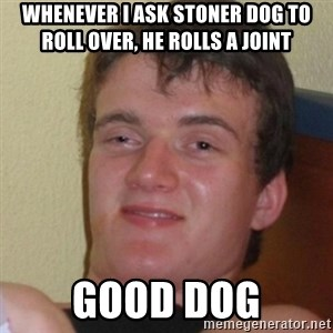 Stoner Stanley - Whenever I ask Stoner dog to roll over, he rolls a joint good dog