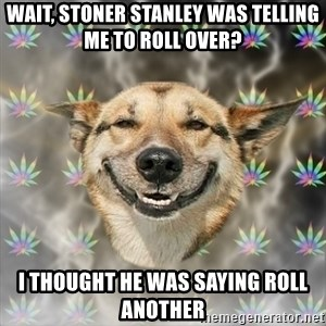 Stoner Dog - Wait, Stoner Stanley was telling me to roll over? I thought he was saying roll another
