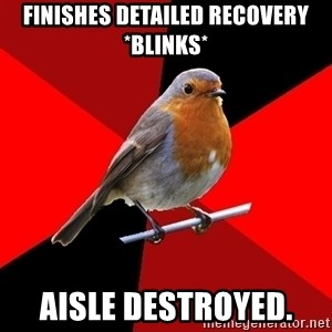 Retail Robin - Finishes Detailed Recovery *blinks* aisle destroyed.